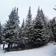 Photo: #Invierno #snow #nieve #neige #hiver