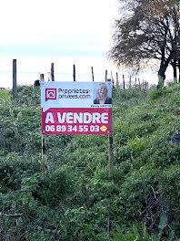 terrain à Saint-Michel-de-Feins (53)