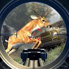 Safari Hunt 2018 icon