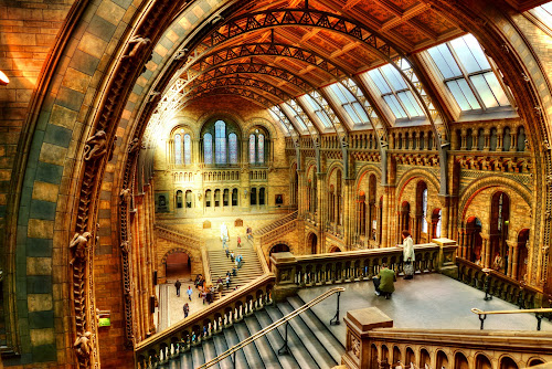 Natural History Museum by Piotr Owczarzak - Buildings & Architecture Other Interior ( south kensington, building, england, stairs, london, museum, light,  )