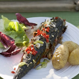 Summer Grilled Mackerel