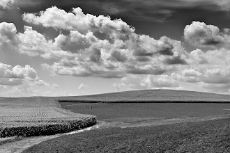 Photo: Nebraska Fields - 3rd place - B&W The Nebraska Farm