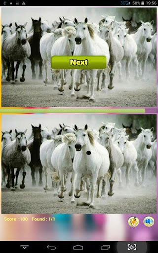 Wild Horse Find Difference