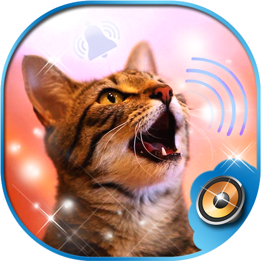 Cat Ringtone Sounds