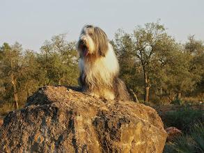 Photo: 1st walk in Morocco, November 2007
