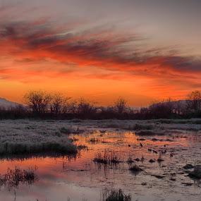 by Brenda Baird - Landscapes Sunsets & Sunrises (  )