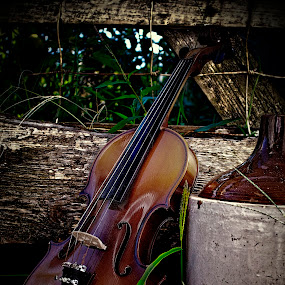 Moonshine & Strings by Allie Small - Artistic Objects Musical Instruments ( moonshine, allie, strings, small, photography )