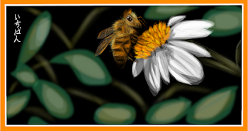 Honey Bee (2)