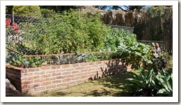 garden-veggies-lower