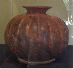 colima-museum-squash