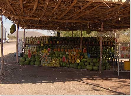 manzanillo-hwy-fruit-stand