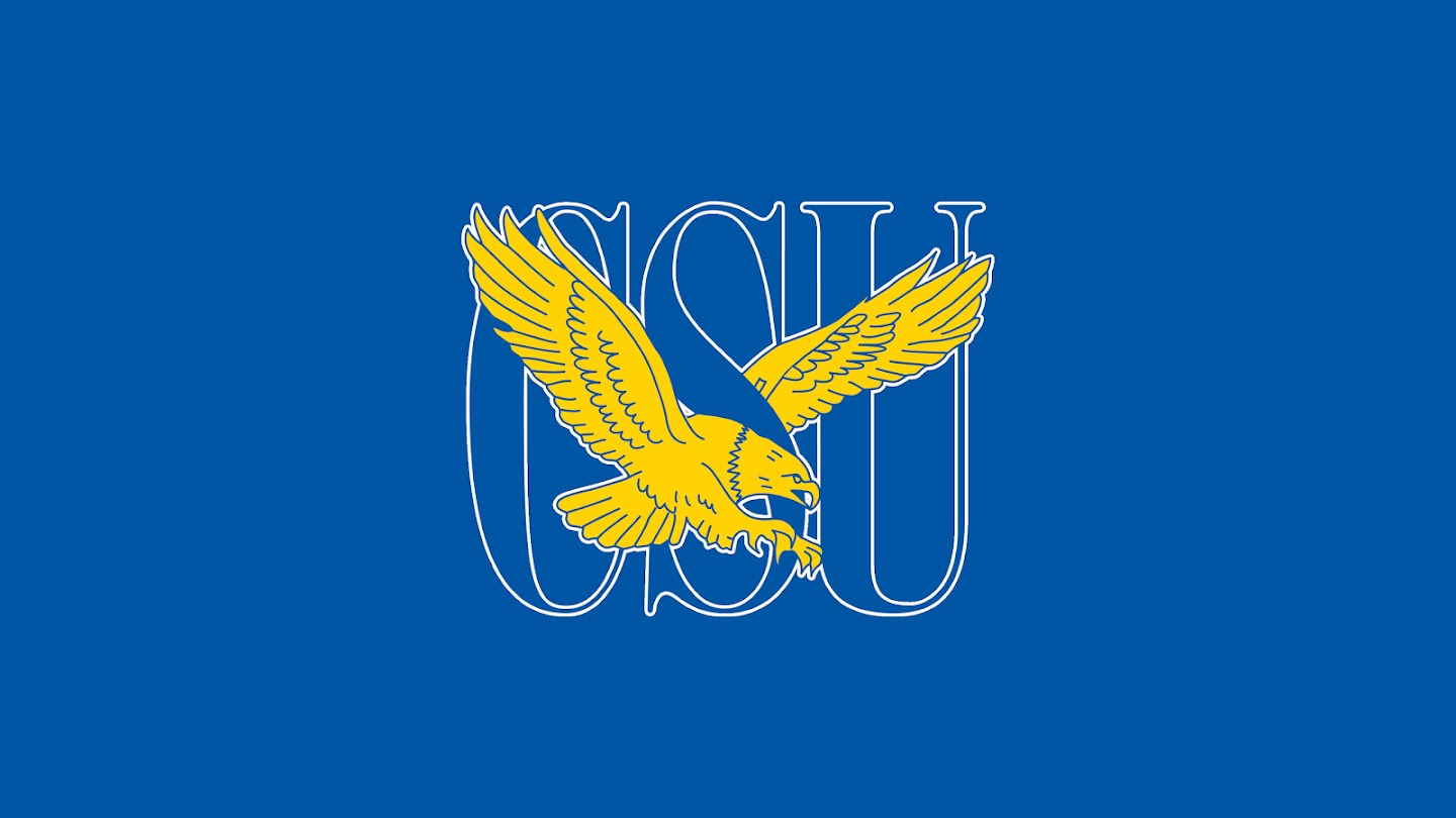 Watch Coppin State Eagles men's basketball live