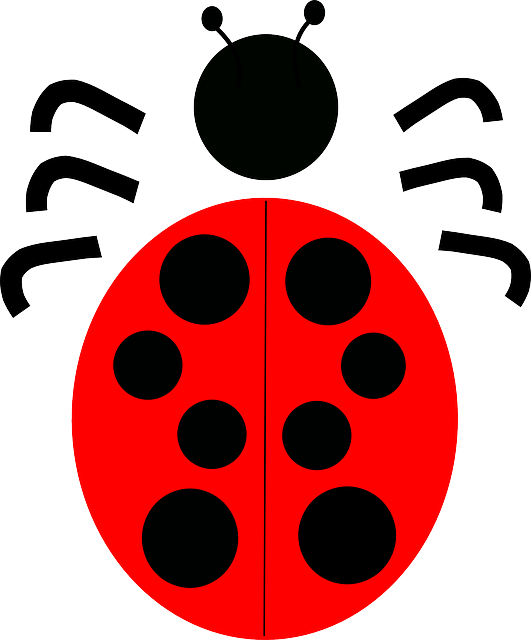 Bug, Red, Dots, Ladybug, June