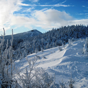 Winter Beauty by Michael Lunn - Landscapes Mountains & Hills ( clouds, skiing, mountains, winter, cold, sports, vermont, killington,  )