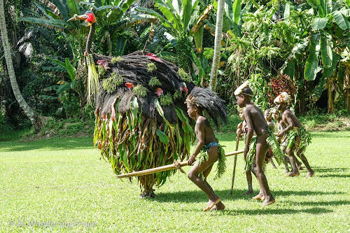 Papua. New Guinea East Sepik River Clans Crocodile Traditions. Cassowary Dance