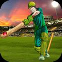 Pakistan Cricket League: Best Cricket 2019 icon