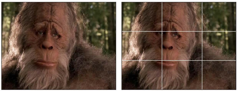 BigfootHarry_combo.jpg