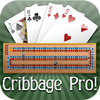 Cribbage Pr.. file APK for Gaming PC/PS3/PS4 Smart TV