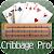 Cribbage Pro Online! file APK Free for PC, smart TV Download