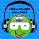 Download FM Radio Music El Salvador Free Online For PC Windows and Mac