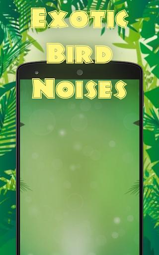 珍奇的鳥的聲音