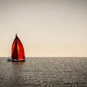 Red Sails on the Sea by Shaun Groenesteyn - Novices Only Objects & Still Life