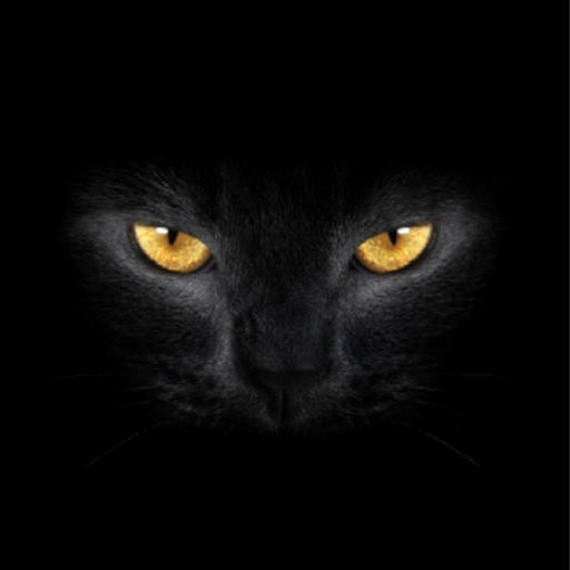 Где кот? - Новогодняя! file APK for Gaming PC/PS3/PS4 Smart TV