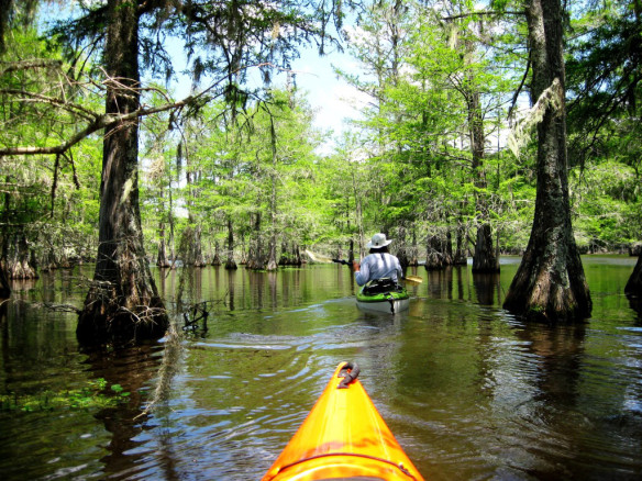 Kayaking 101 Houston