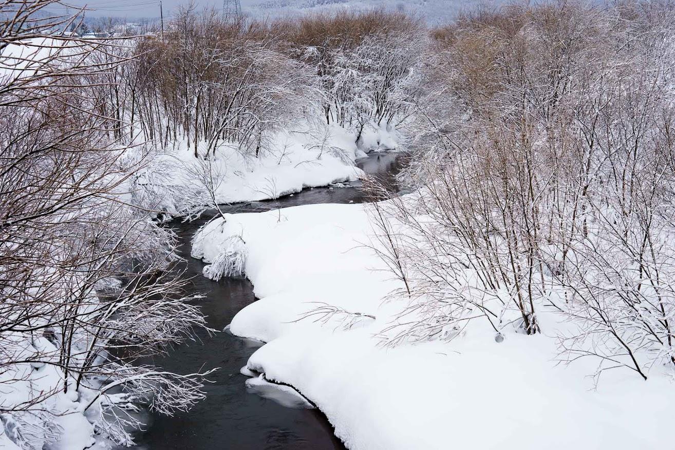 川中の水は、温かい?