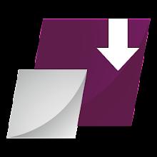 Proget Backup Download on Windows