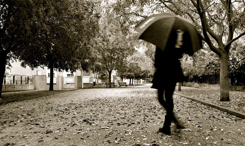 autunno di savephoto