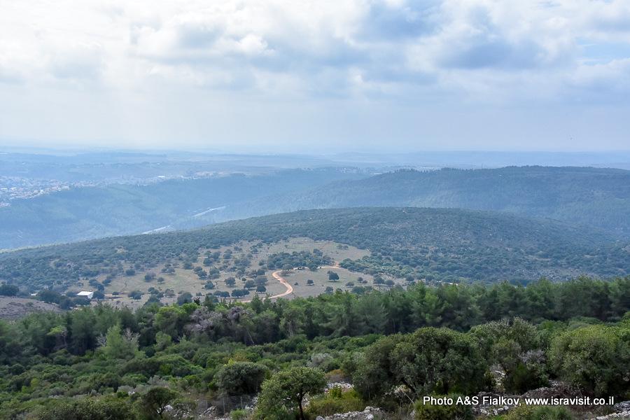 Горы Кармель. Экскурсия гида в Израиле Светланы Фиалковой.