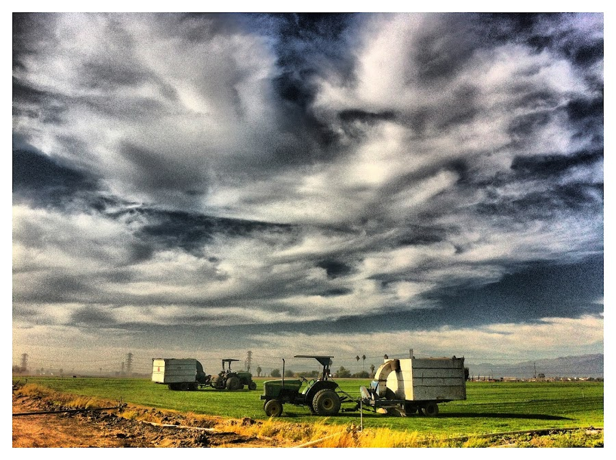 The Sod Farm by Roger  Clay - Instagram & Mobile iPhone