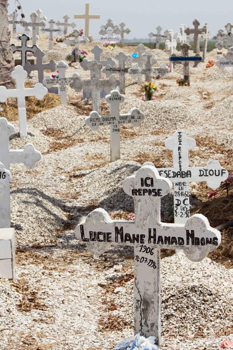 il cimitero sull'isola dei molluschi di antonioromei