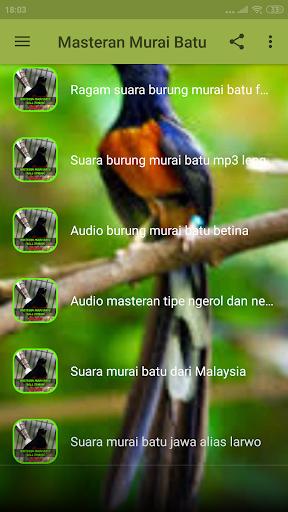 2020 Masteran Murai Batu Roll Tembak Offline App Download For Pc Android Latest