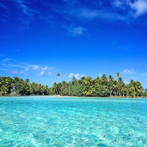 Pick some dream islands and wade into a cool South Pacific reef on a Lindblad expedition.