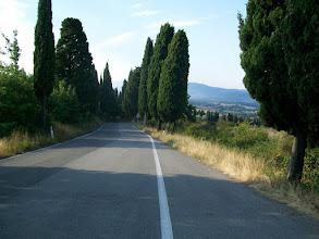Photo: 24e Dag, zaterdag 8 augustus 2009 Monto di Fo ,vertrek: 07.00 uur Florance, aankomst: 13.45 uur Temp. maximum: 35 graden, Wind: 2 Bfr, Windrichting: Z.O. Weerbeeld: droog, zonnig, warm. Dag afstand: 54,7 km, Tijd: 3:47:02 uur. Gemiddelde: 14,4 km Totaal gereden: 1793 km het typische beeld van Toscane met Cypressen.