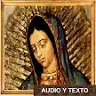 Oración Santa Maria De Guadalupe APK