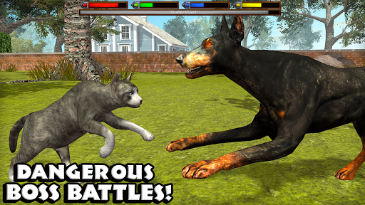 Download Ultimate Cat Simulator MOD APK 5
