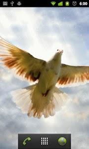 flying birds live wallpaper screenshot 1