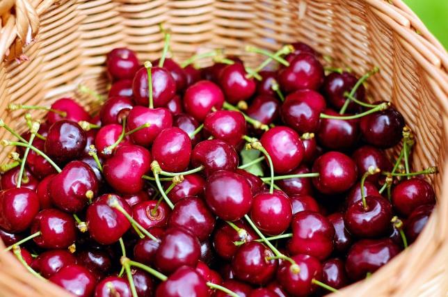 Ăn cherry nhập khẩu mỗi ngày sẽ giúp bạn có trí nhớ linh hoạt hơn