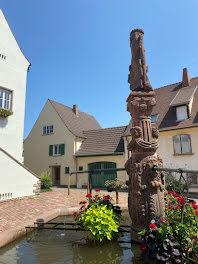 locaux professionnels à Ammerschwihr (68)