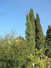 Photo: Church in Cana Galilee