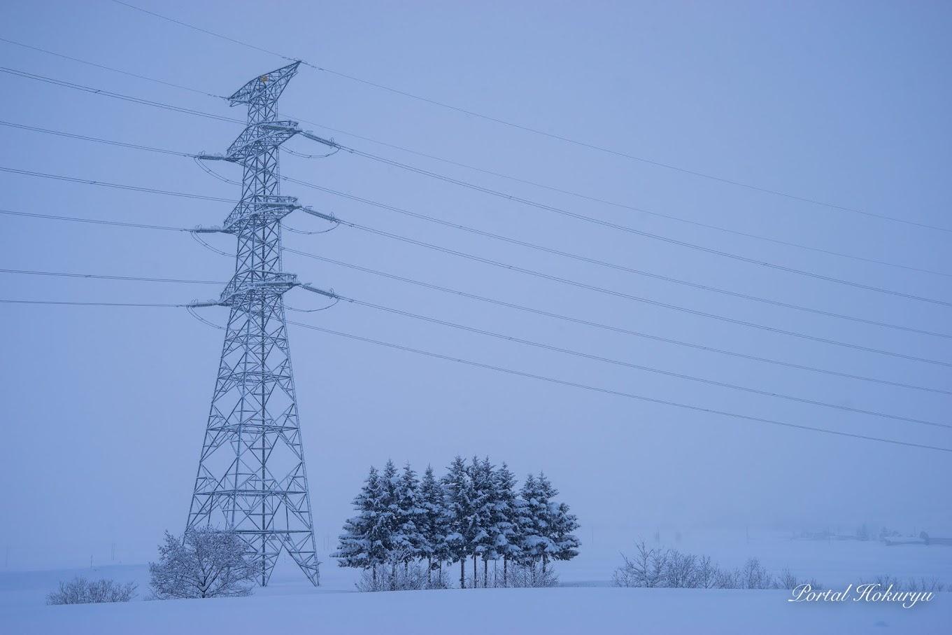 鉄塔と11本の木