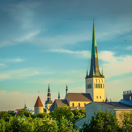 vie of old city Tallinn by Maksim Kozlov - Buildings & Architecture Office Buildings & Hotels