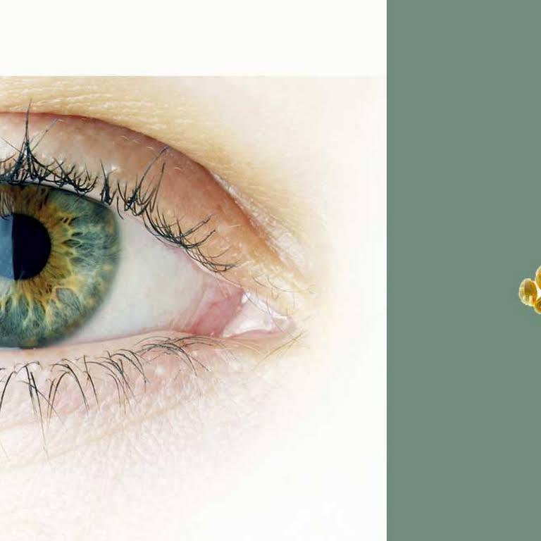 b37a3cdece Οφθαλμίατρος Περαία - Αχιλλέας Παπαπαυλίδης - Οφθαλμίατρος στην ...