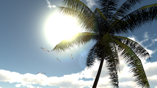 Tropical Dream VR