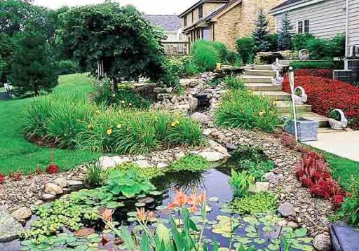 Home Landscape Idea