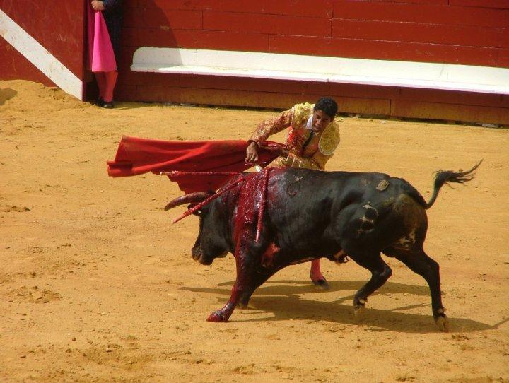 Morte in rosso nell'Arena di Dax di fa.mo