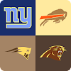 guess the nfl team game APK